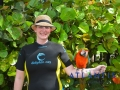 Birds 8dfa71b48e554ffabbd44da71b0049d5